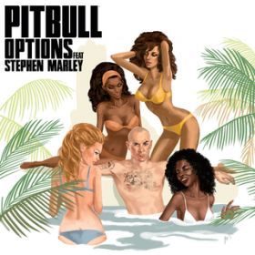 Options / Pitbull