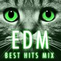 EDM BEST HITS MIX