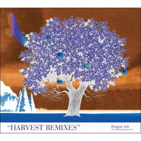 アルバム - HARVEST REMIXES / Dragon Ash
