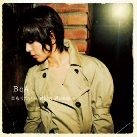 THE END そして and...(Instrumental) / BoA
