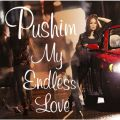 アルバム - My Endless Love / PUSHIM