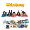 アルバム - GOLDEN☆BEST  Whiteberry / Whiteberry