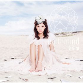 B-Bird / earthmind