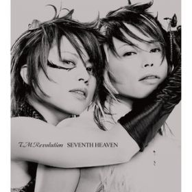Tears Macerate Reason / T.M.Revolution