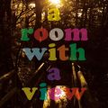 LOW IQ 01の曲/シングル - a room with a view acoustic