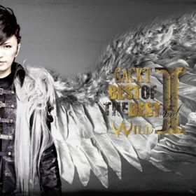 ANOTHER WORLD(BOB -WILD- Ver.) / GACKT