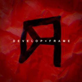 Realize (the decade) / DEVELOP=FRAME