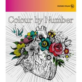 Colour by Number / MONKEY MAJIK