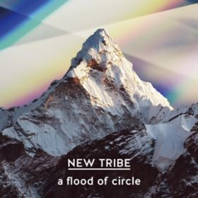 NEW TRIBE / a flood of circle