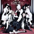 アルバム - WHITE DUST / The THIRTEEN