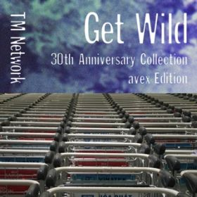 アルバム - GET WILD 30th Anniversary Collection - avex Edition / TM NETWORK