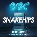 Right Now Snakehips