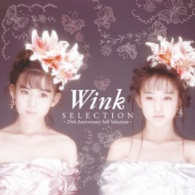 WINK FIRST LIVE Shining Star - Dreamy Concert Tour On 1990 - / Wink