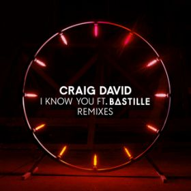 I Know You (Sultan + Shepard Remix) / Craig David