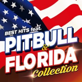 BEST HITS feat. PITBULL & FLO RIDA COLLECTION / V.A.