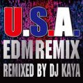 DA PUMPの曲/シングル - U.S.A.EDM Remix (Remixed by DJ KAYA)