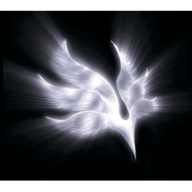 アルバム - orbital period / BUMP OF CHICKEN