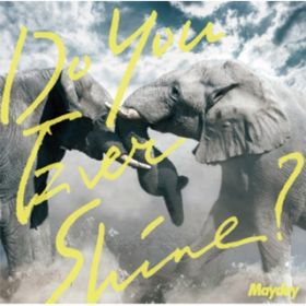アルバム - Do You Ever Shine? / Mayday