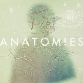 ANATOMIES / Halo at 四畳半