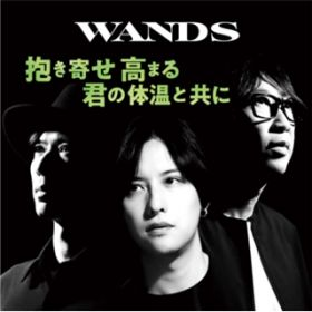 Just a Lonely Boy〜WANDS 第5期 ver.〜 / WANDS