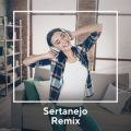 Sertanejo Remix