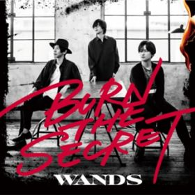 BURN THE SECRET / WANDS