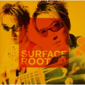 ROOT / SURFACE