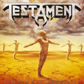 Greenhouse Effect (LP Version) / Testament