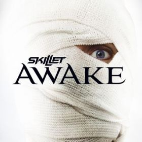 One Day Too Late / Skillet