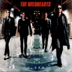 アルバム - Endless, Nameless / The Wildhearts