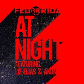 At Night (feat. Liz Elias and Akon) / Flo Rida