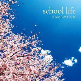 KAME&L.N.K